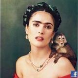 Fatma Alsayed